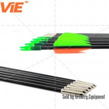 ViE 31 inch Spine 800 Fiberglass Shaft Arrows With 3 inches Plastic Vans Plus Target Point -12 pack
