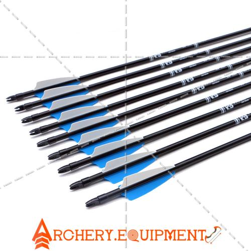 30inch Target Hunting Arrows Fiberglass Arrow with Replaceable Arrowhead  Spine 500 for Recurve/Coumpond Bows