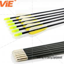 ViE 31 inch Spine 700 Fiberglass Shaft Arrows With 3 inches Plastic Material Vane Plus Target Point -12 pack