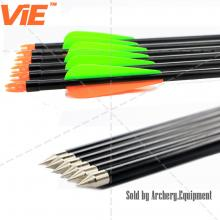 ViE 30 inch Spine 500 Fiberglass Shaft Arrows with 3 inches Plastic Material Vane Plus Target Point -12 pack