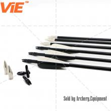 ViE 31 inch Spine 500 Fiberglass Shaft Arrows with 3 inches Plastic Material Vane -12 pack