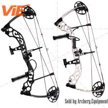 Qinhuang Compound Bow